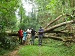 .. only to be within 200 m of solid ground, but blocked by a tree-fall. Thanks to KWS for rescuing us!