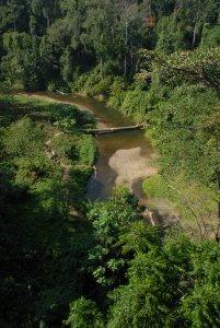 Way Canguk in Bukit Barisan Selatan National Park -- a bat diversity hotspot (photo Tigga Kingston)